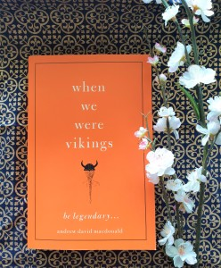 When We Were Vikings book review